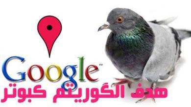 تصویر الگوریتم کبوتر گوگل چیست